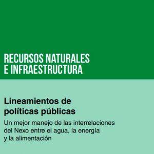 Lineamientos de políticas públicas: un mejor manejo de las interrelaciones del Nexo entre el agua, la energía y la alimentación